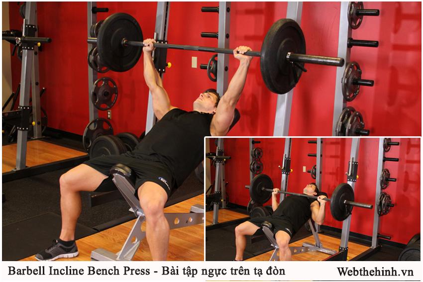 Barbell Incline Bench Press - Bài tập ngực trên tạ đòn